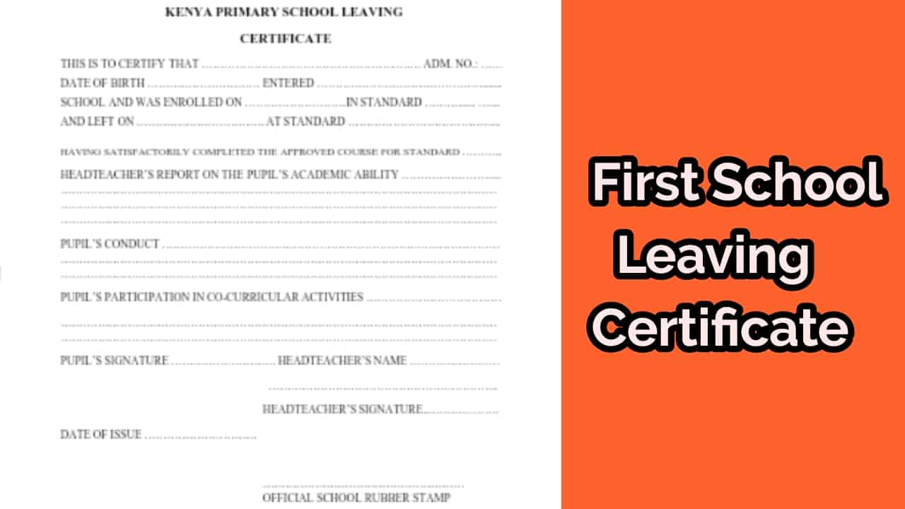 how to retrieve lost first school leaving certificate result