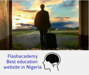 What are the effects of brain drain in Nigerian economy