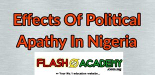 Effects of political apathy in Nigeria