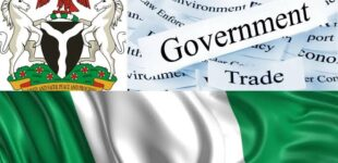 Local Government In Nigeria : Definition, Functions And Structure