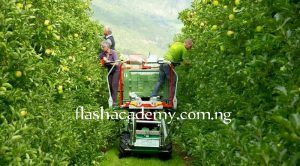 Less competitive Courses in Nigeria Agriculture