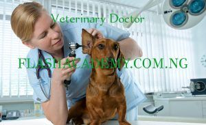 Veterinary Medicine